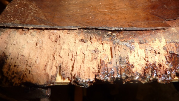 Rotten base side of longcase clock